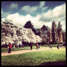 @University of Washington