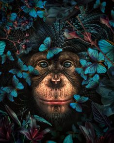 New art. by Marcel van Luit Van Luit / Most Beautiful Animals, Beautiful Creatures, Art And Illustration, Jungle Animals, Cute Animals, Baby Animals, Tier Fotos, Animal Wallpaper, Animal Paintings