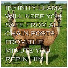 Oh my gods the infinity llama