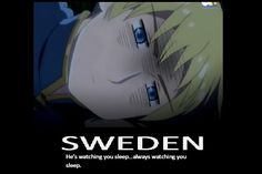 I honestly don't mind..because I awkwardly like Sweden.......i don't know why ..I just find him attractive