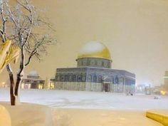 """الثلوح في االقدس، فلسطين  -  Snow In Palestine  """"صباح الخير """""""
