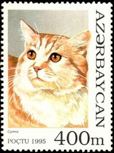 by Omer Ashraf Remarkable for its absent or short tail, Cymric is a feline breed that is essentially the same as the Manx. Vintage Stamps, Vintage Cat, Cat Medicine, Cymric, Postage Stamp Art, Domestic Cat, Fauna, My Stamp, Stamp Collecting