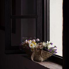 ¡Buenos días de lunes!, más flores silvestres para comenzar la semana...feliz día!...🌼🌸🍃  .  .  #canonespaña #floressilvestres #still_life_gallery #stilllife_perfection #floweroftheday #myeverydaymagic #naturehippys #9vaga_stilllife9 #9vaga_shabbysoft9 #tv_living #tv_colors #tv_stilllife #tv_fadingbeauty #transfer_visions #heart_imprint  #photostorn #global_ladies #rsa_vsco #rsa_ladies #petalsandprops #curated_nature #stilllife #myeverydaymagic #artistry_flair #artistry_vision…