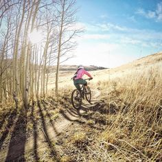 thebicycletree:  It was a little cold this morning at #deervalley but the trails and light were perfect. #shredpink  @kdayracing  # #tidalwave #twistandshout #mtb #mountainbike #femaleathlete #outdoorwomen #ridelikeagirl #parkcity #wasatch #utah #utahgram #instabike #utahisrad #loves_mtb #singletrack @stansnotubes @deervalleyresort  @notubeswomen by sarahmkaufmann http://ift.tt/1MgInR7