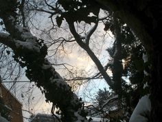 Winter in Lancaster, PA