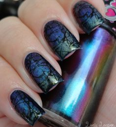 Lively Lacquer: NOTD: Mari Moon Gradient + Stamping