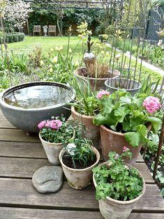 Wood Plastic, Outdoor Gardens, Sweet Home, Gardening, Interior, Plants, Gardens, Garden & Outdoor, Rockery Garden