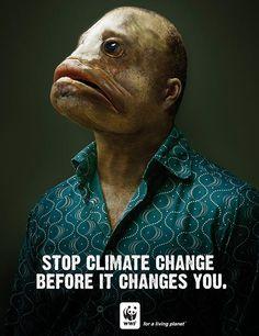 WWF's 'Horrifying' and 'Frightening' Ads : TreeHugger