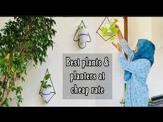 Plants and pots at cheap rate in kerala // Best hanging planters online. - YouTube Buy Plants, Cool Plants, Garden Online, Plants Online, Hanging Planters, Kerala, Pots, Passion, Youtube