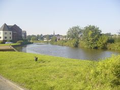 River Exe, Exeter.