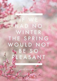 (via ♔ Spring   ❀ Spring Sweetness ❀   Pinterest)