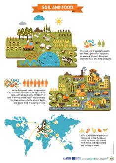 SOIL Infographics on Illustration Served