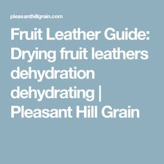 Fruit Leather Guide: Drying fruit leathers dehydration dehydrating | Pleasant Hill Grain