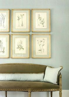 Vintage French herbarium gallery wall French farmhouse interior design ideas