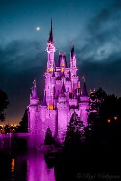 Hi All! Need help with your Disney vacation or any other vacation for that matter? Please contact me. I am a travel agent - No Fees! Krystal Ensing Castles & Dreams Travel Travel Agent - NO FEES Authorized Disney Vacation Planner Cruises and More krystal@castlesanddreamstravel.com 1-800-571-6313 Ext. 16 www.castlesanddreamstravel.com