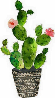 Use this cactus as inspiration to draw my own. Use this cactus as inspiration to draw my own. Image Cactus, Cactus Art, Cactus Drawing, Succulent Drawings, Watercolor Cactus, Watercolor Paintings, Simple Watercolor, Tattoo Watercolor, Watercolor Animals