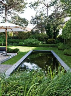 chic and lovely... adore the boxwood with the straight lines of the pool