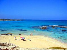 Cyprus  Cyprus tax planning team