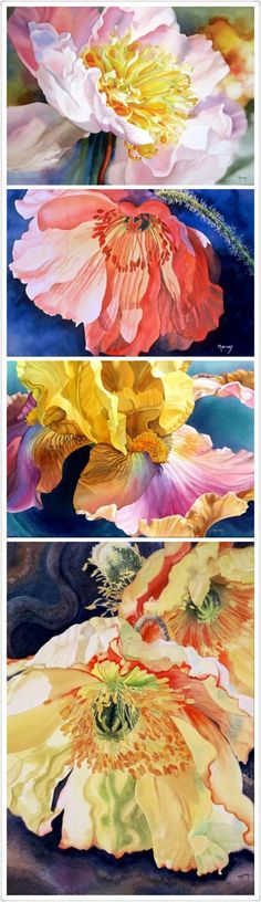 By Marney Ward. I really like this selection of flower paintings. The colours are so vibrant, and the paintings are magnified with so much detail.