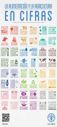 Infografía: La Alimentación y la Agricultura en Cifras - FAO 2013
