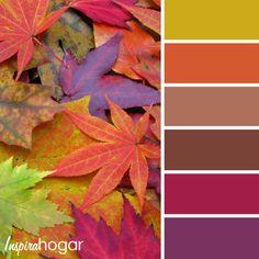 Colores de otoño en la decoración