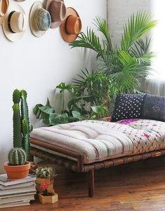 Un coin salon rempli de plantes
