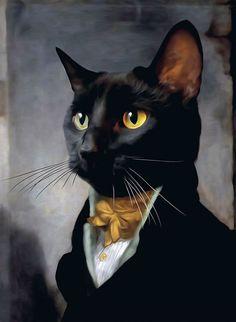 Crazy Cat Lady, Crazy Cats, Fancy Cats, Cat People, Tier Fotos, Animal Heads, Cool Cats, Cat Art, Pet Portraits