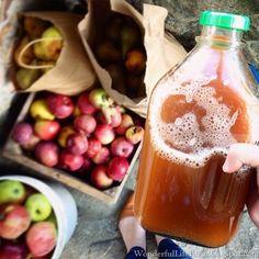 Wonderful Life Farm: Cider Pressing Day