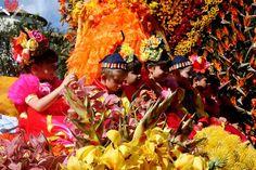 Flower Festival, Madeira