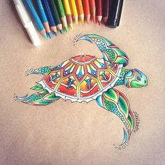Multi Colored Turtle by Nikki Beth