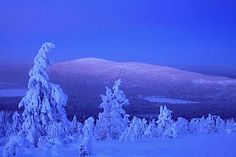 Lapland, my country looks so beautiful in winter <3 the blue moment