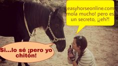 www.easyhorseonline.com