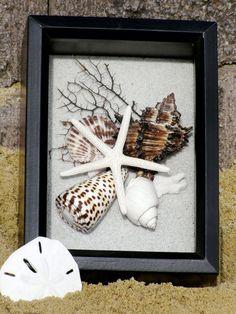 BEACH DECOR SEASHELL shadow box -- black/white, Ebony & Ivory, coastal, nautical, via Etsy Seashell Shadow Boxes, Seashell Frame, Seashell Art, Seashell Crafts, Beach Crafts, Diy Crafts, Crafts With Seashells, Starfish, Seashell Display
