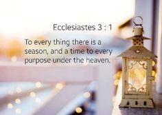 Pengkhotbah 3:1 (TB)  Untuk segala sesuatu ada masanya untuk apa pun di bawah langit ada waktunya. by lovelybeb