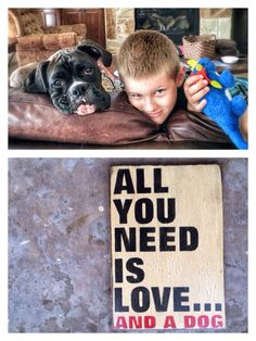 Reclaimed Rustic Solid Wood Sign.  all you need is love and a dog, Crackled Home Decor, Humorous Signs