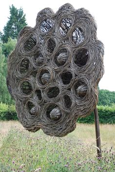 Willow weaving garden sculptures.... fun day :)  http://www.rootsshootsandleaves.com/products-page/rural-skills-workshops/willow-weaving-a-contemporary-garden-sculpture/
