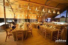 Fairy Lights, Branches, wedding, Goeters, Old Mac Daddy, Elgin, www.baiegoeters.co.za