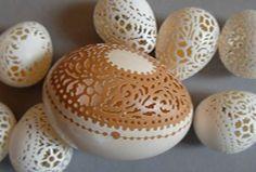 Extraordinary Eggs