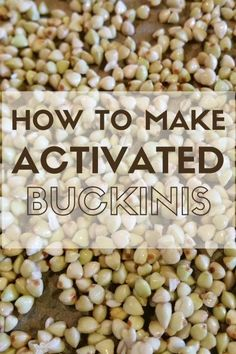 Learn How To Make Activated Buckinis using organic buckwheat groats. Learn the art of soaking then dehydrating them to make healthy, crunchy Buckinis.