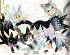 El gatito negroblanco