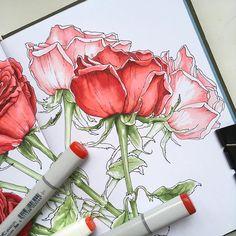 За 4 недели освойте самые красивые и сложные в рисовании цветы, порадуйте своими рисунками близких и друзей! Время такое: 11:00-13:30 Расписание такое: 26 февраля - РОЗЫ 5 марта - МИМОЗА  12 марта - НАРЦИССЫ  19 марта - ТЮЛЬПАНЫ  Можно посетить отдельные занятия выборочно.  Стоимость участия - 2000₽ за 1 занятие (прошедшим базовую  ботанику - 1600₽). При оплате всех четырёх занятий сразу - 7200₽ (для базовых ботаников - 6000). Работа над формой и цветом в рамках одного занятия. Первую…