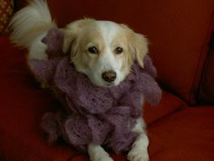 Audrey Pearl's scarf was knitted in about 3 hours using Rowan Kidsilk Creation in Dewberry.