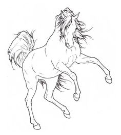 Arabian Rearing Lineart by ReQuay.deviantart.com on @deviantART Pencil Drawings Of Animals, Horse Drawings, Art Drawings, Horse Coloring Pages, Easy Coloring Pages, Horse Rearing, Horse Sketch, Horse Silhouette, Equine Art