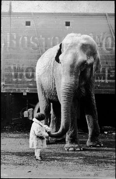 Vintage circus photos: girl and elephant 1930s