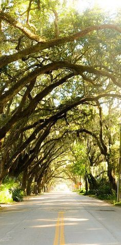 Beeeen on this street !!! St. Augustine, Florida | 27 Underrated U.S. Vacation Spots You Should Visit Before You Die....