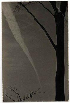 Art Pages - Masao Yamamoto 66