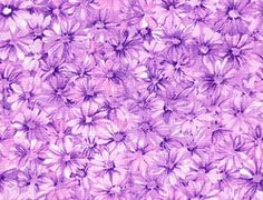 Purple Vintage Backgrounds