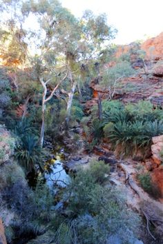 1000 Images About Australia Uluru Amp Kata Tjuta On