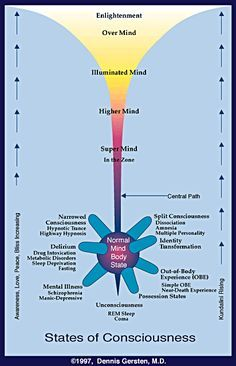State of Consciousness Map Spiritual Wisdom, Spiritual Growth, Spiritual Awakening, Spiritual Warfare, Metabolic Disorders, Levels Of Consciousness, Science, Sleep Deprivation, Knowledge
