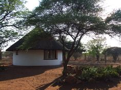 Accommodation for the volunteers is in thatched rondavels. Thatched House, Entertainment Area, Round House, Glass Design, Volunteers, Villas, Cottages, Homesteading, South Africa